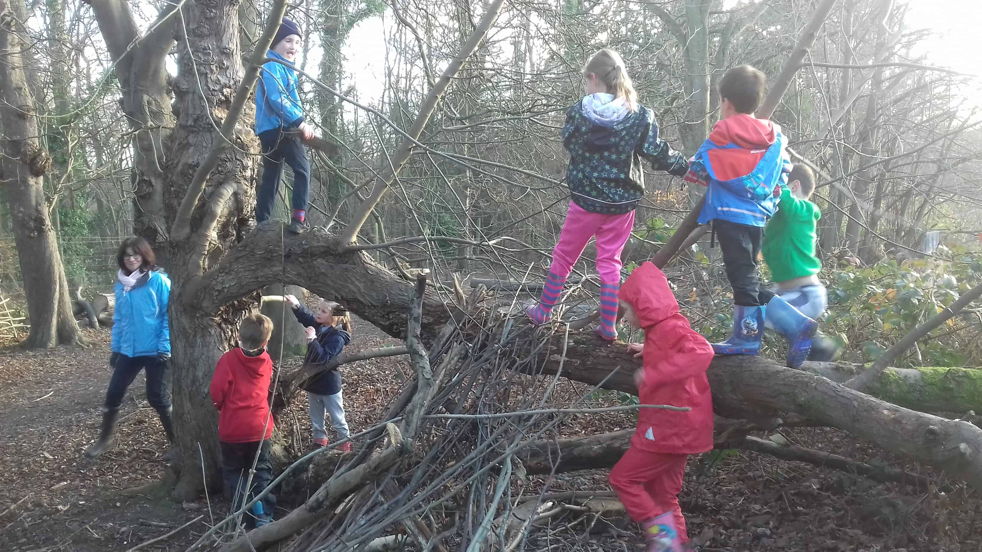 Fun in Forest School