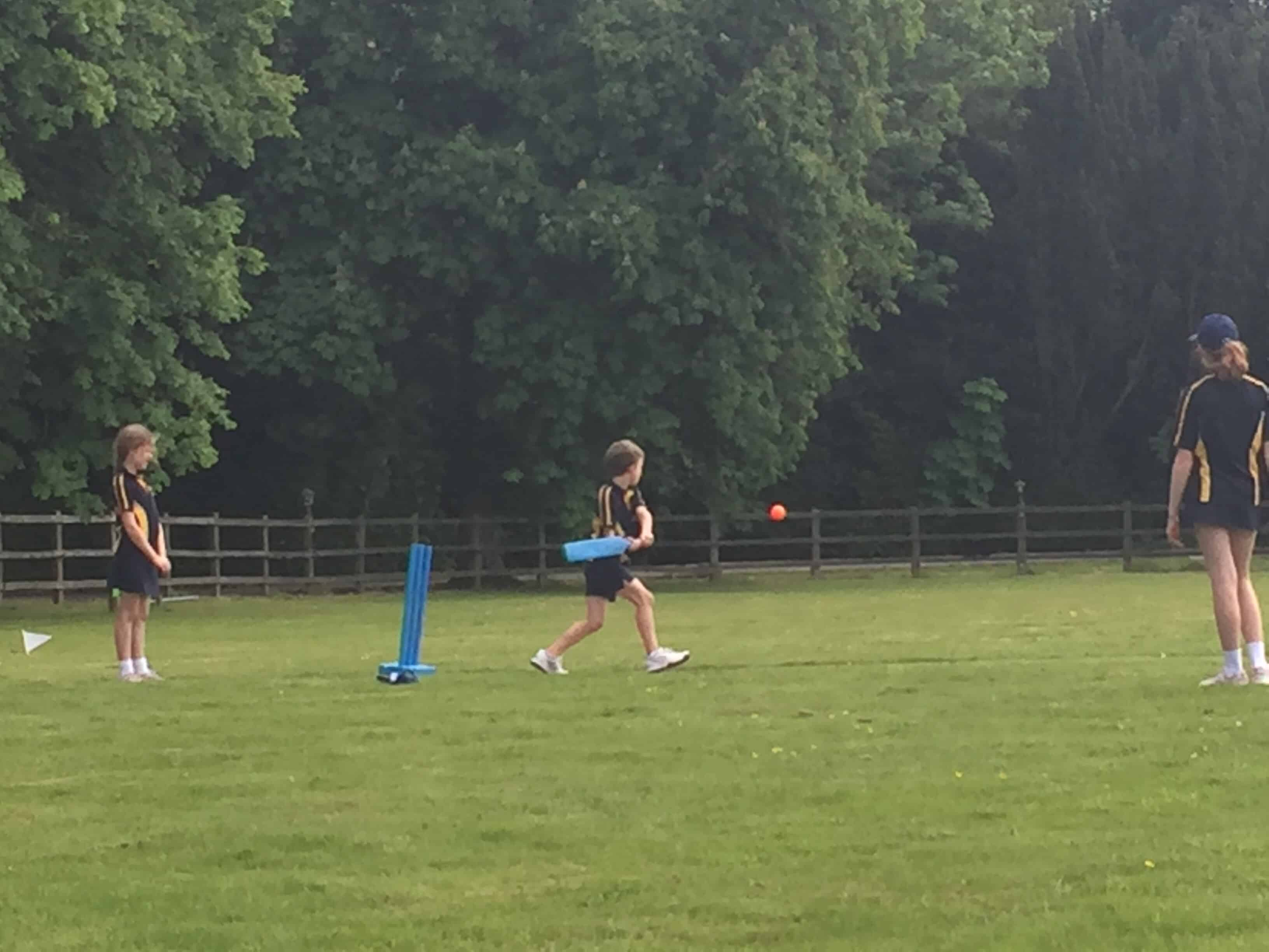 Inter-House Cricket Cup