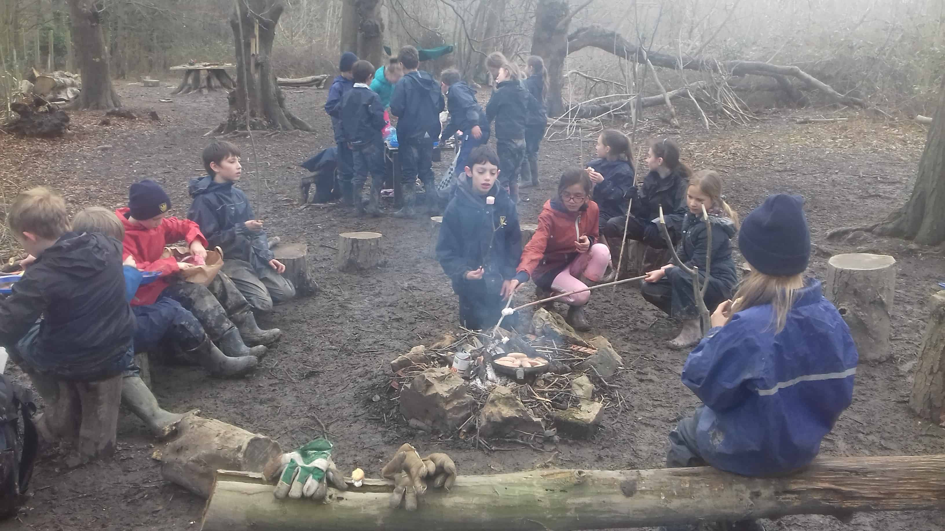 forest class lesson