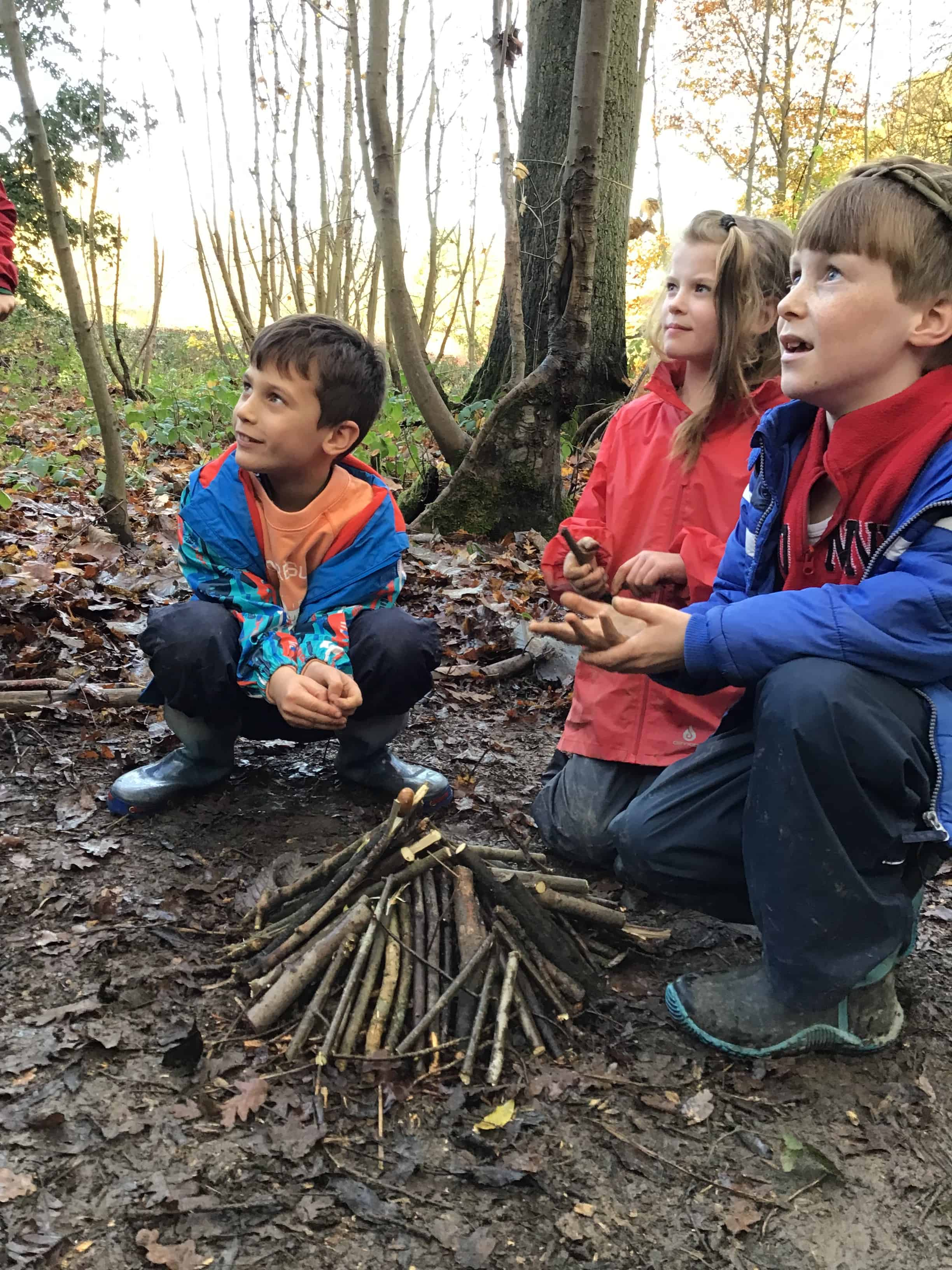 forest school lesson for year 3